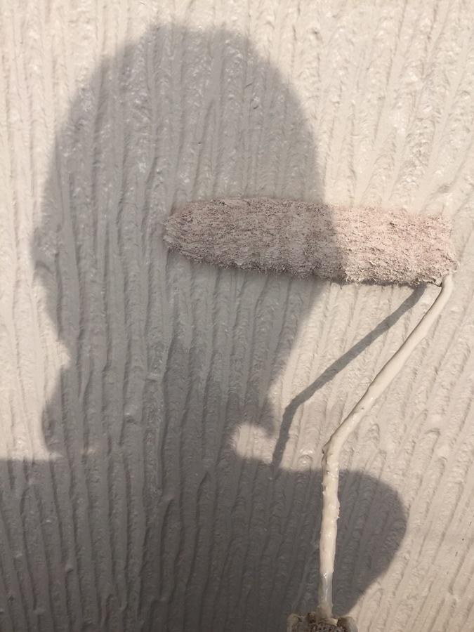6.24川西市 下野様邸 外壁上塗り.JPG